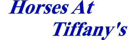 tiffanyshorses2.png